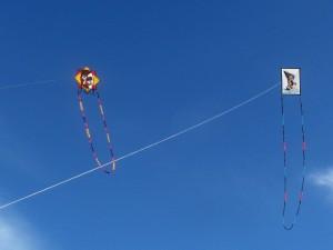 Awsome Custom Homemade Kites? Check. Deb and Mike again.